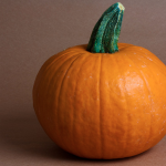 Pumpkin This or Pumpkin That?