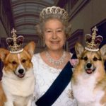 Strange Facts about the Royal Family